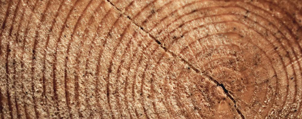 KD木地板立體紋理