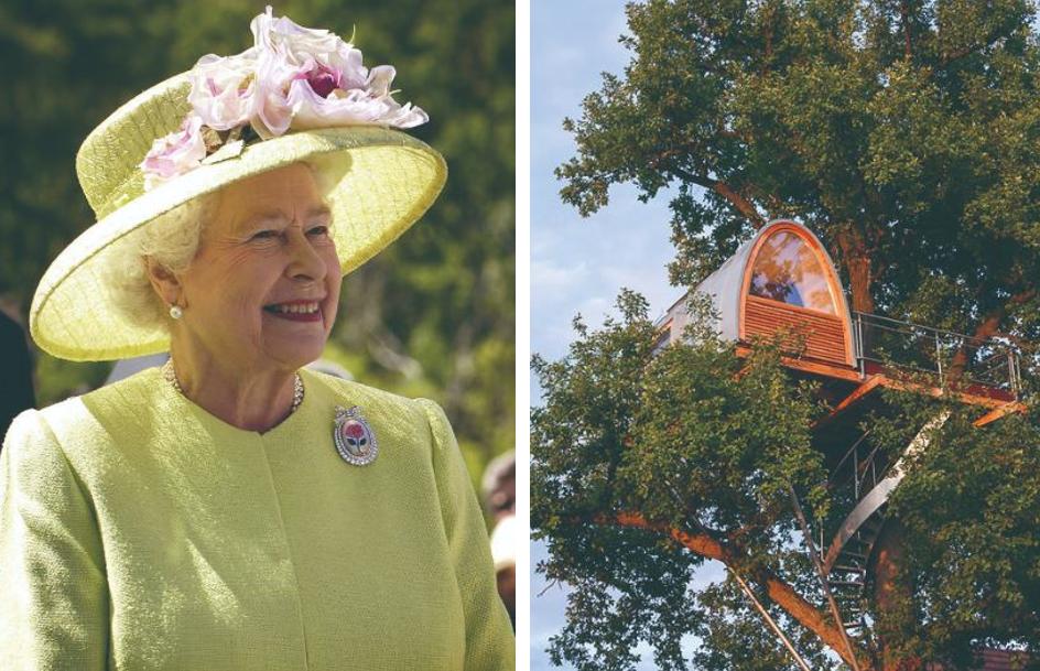 樹屋或英國女王喜愛