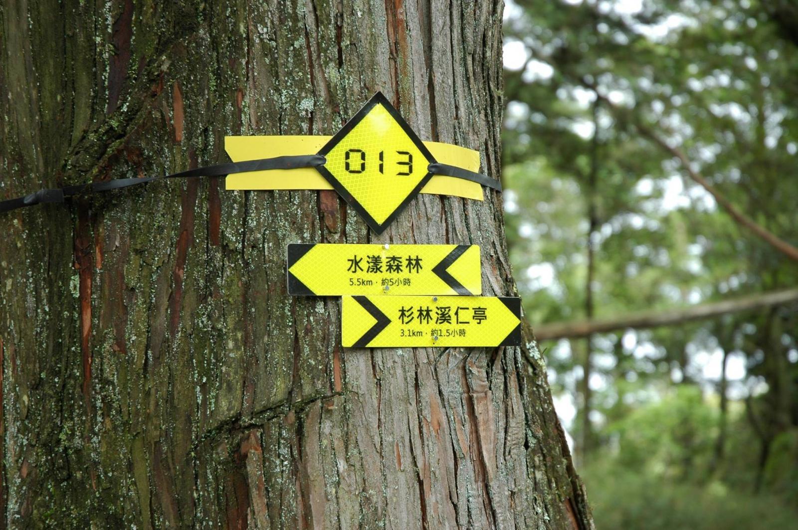 林務局規劃路徑標示