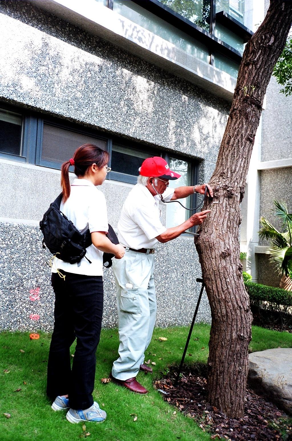 甘霖植物診所