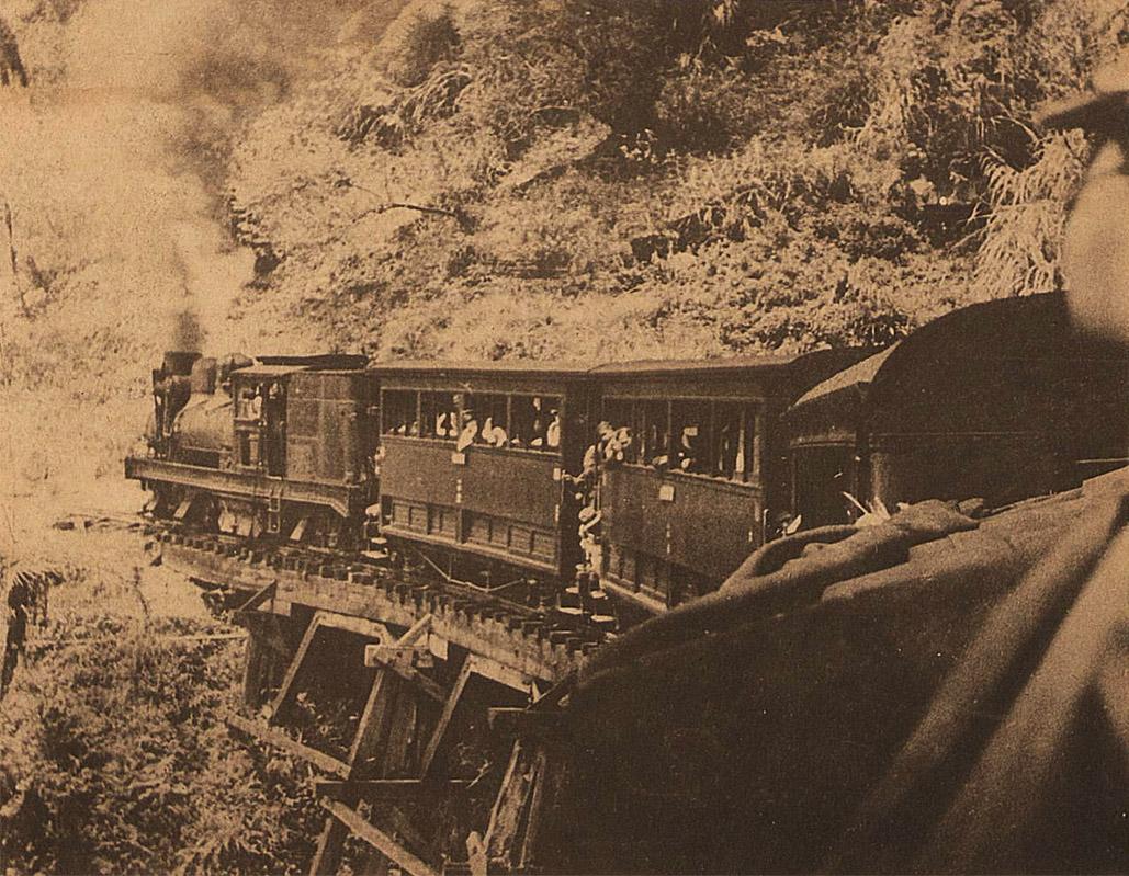 阿里山林場的木頭所建造的森林鐵路