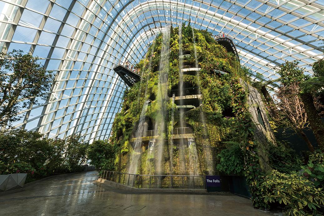 雲霧林冷室入口矗立6公尺高的室內瀑布