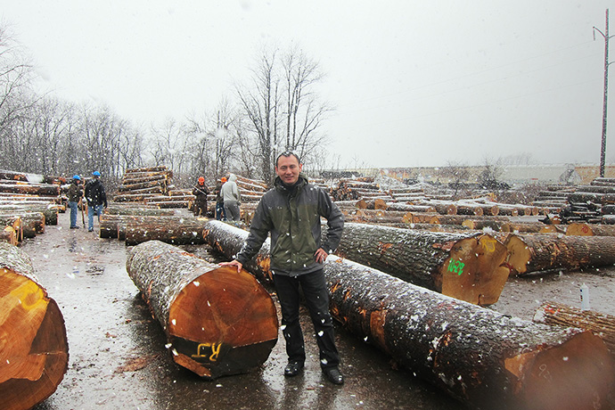 長途跋涉至世界各國尋找原木