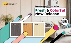 Fresh & Colorful New Release - Reconstituted Veneer Series(圖)